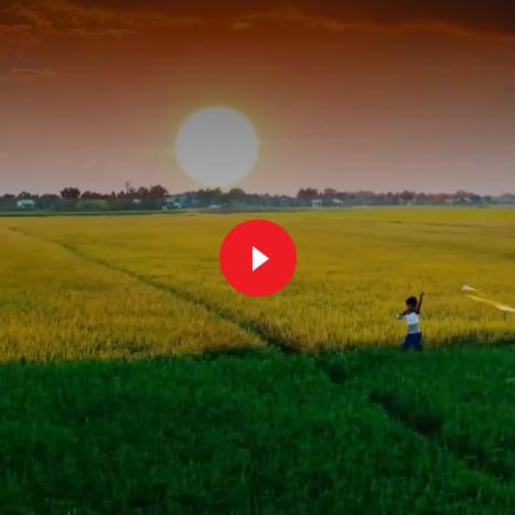 Videa pro Vietnam - Czech Forum of Tourism (Vietnamskou Ambasádu)