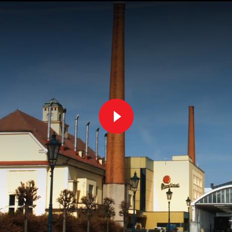 Plzeňský Prazdroj - Videa pro seniorní management